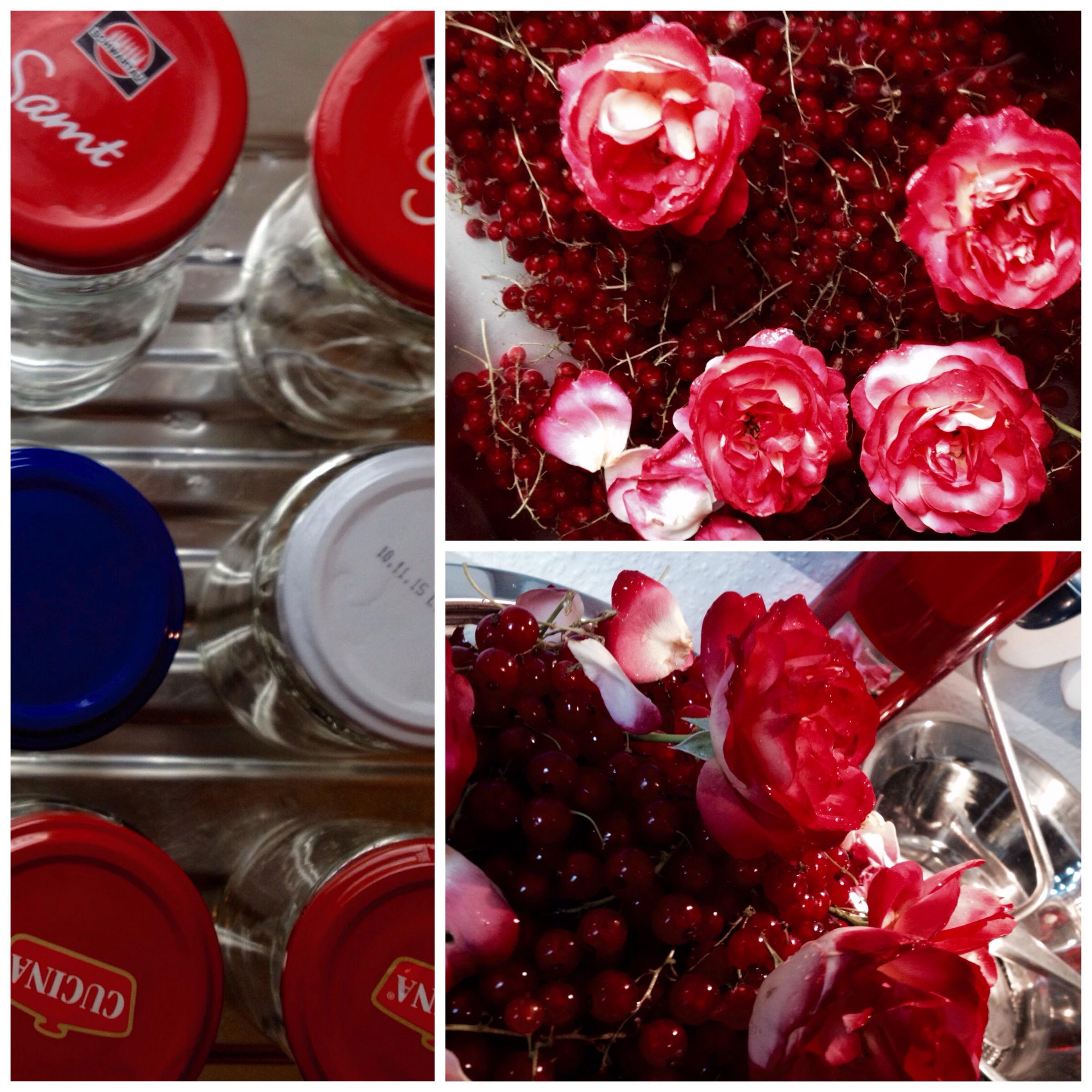 rosen sind rot johannisbeeren auch johannisbeermarmelade mit rosenlik r selbstgemacht. Black Bedroom Furniture Sets. Home Design Ideas